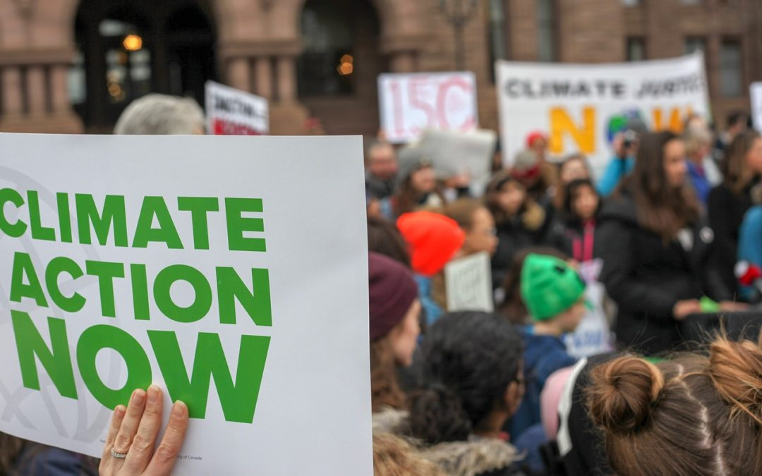 CLASS ACTION = azione collettiva ecco la riforma del 2019
